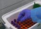 В Томске прокомментировали ситуацию с заболевшими коронавирусом