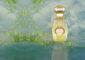 Top 10 Fragrances for Women