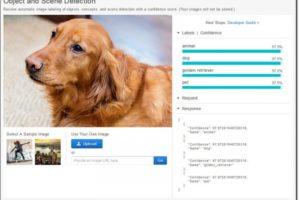 Amazon Rekognition: сервис по распознаванию лиц, способный на глубокий анализ изображения